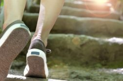 climb steps